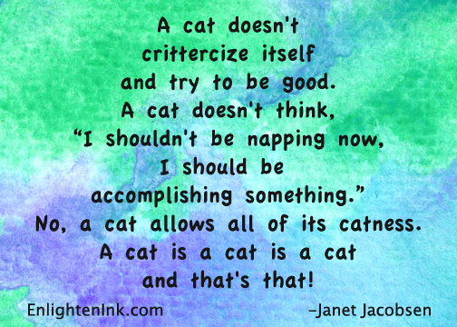 "A cat doesn't crittercize itself and try to be good. A cat doesn't think, ""I shouldn't be napping now, I should be accomplishing something."" A cat allows all of its catness. A cat is a cat is a cat and that's that!"