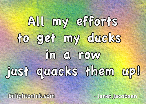 All my efforts to get my ducks in a row just quacks them up.
