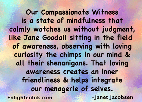 Our Compassionate Witness is a state of mindfulness that calmly watches us without judgment, like Jane Goodall sitting in the field of awareness, observing with loving curiosity the chimps in our mind and all their shenanigans. That loving awareness creates an inner friendliness and helps integrate our menagerie of selves.