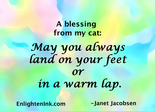 A blessing from my cat: May you always land on your feet, or, in a warm lap.