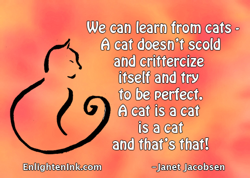 We can learn from cats - a cat doesn't scold or crittercize itself and try to perfect. A cat is a cat is a cat and that's that!